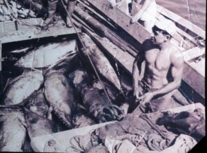 a man in a tuna fishing boat in the 40s